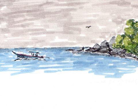 rysunek azjatyckiej plazy