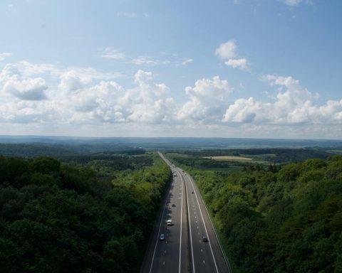 autostrada idąca w lesie pomiędzy drzewami